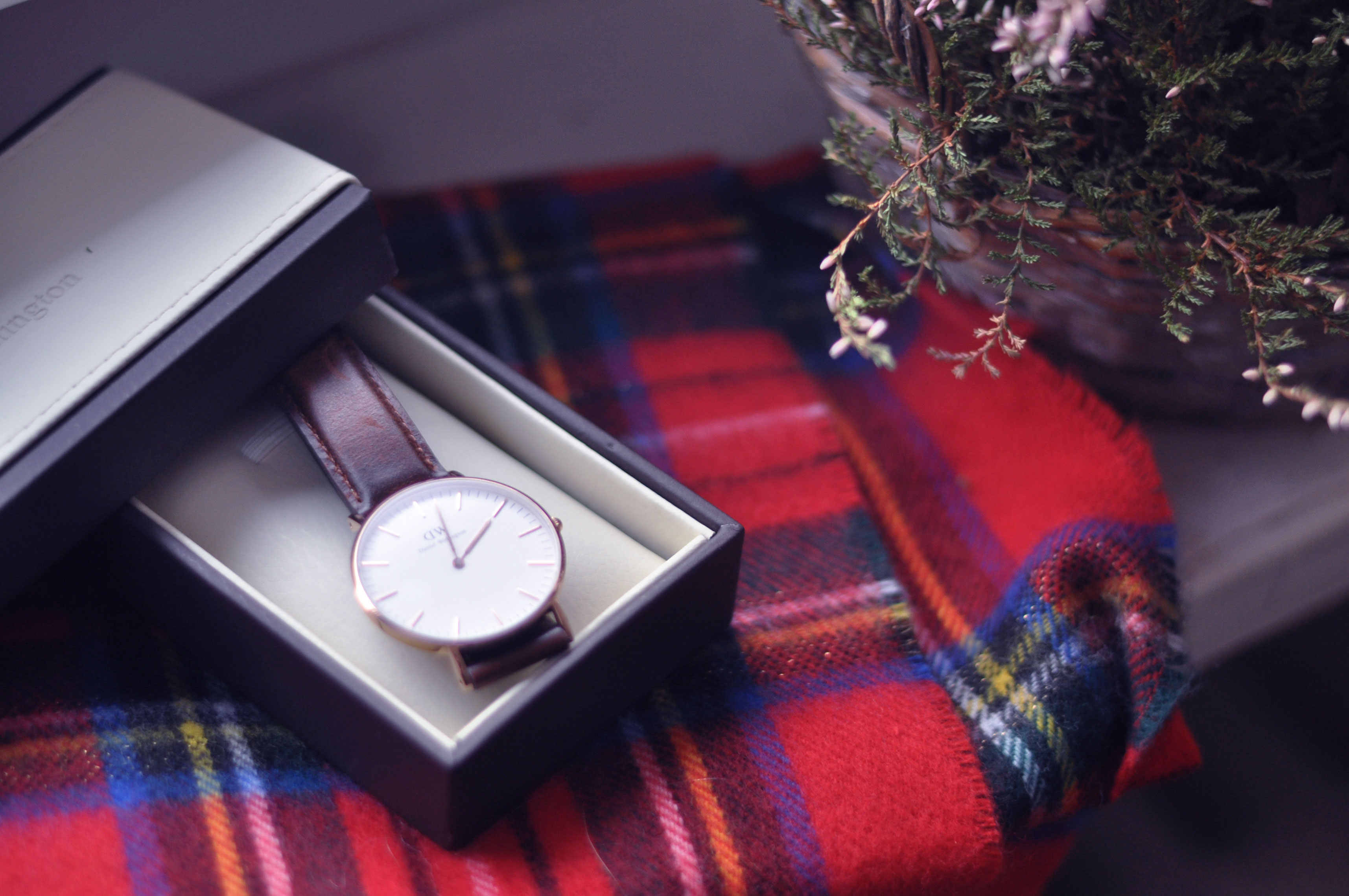 Herbstfavoriten Daniel Wellington