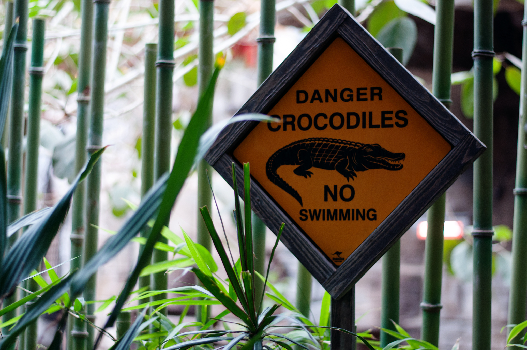 Gefahrenschild Krokodile