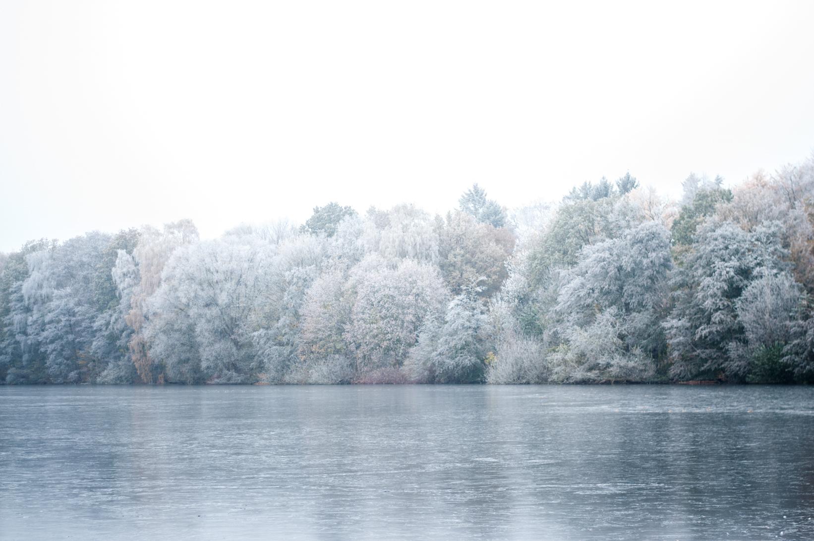 Winter Bramfelder See